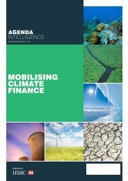 MOBILISING CLIMATE FINANCE