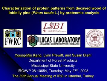 (Pinus taeda L.) by proteomic analysis
