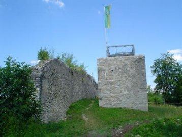 092-Ausflugziel II Burgruine Hiltenburg Bergfried und Mauer_130116