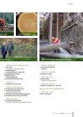Waldverband aktuell  - Seite 3