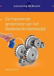 De haperende groeimotor van het Nederlands kleinbedrijf