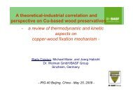 influence on copper fixation - IRG. International Research Group on ...