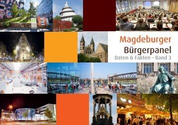 Magdeburger Bürgerpanel - Daten & Fakten, Band 3