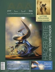 Edicion No 19 AAA Plus Magazine