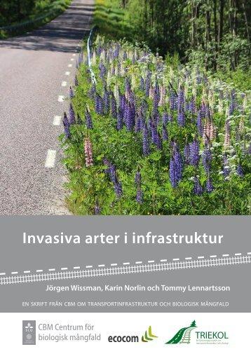 Invasiva arter i infrastruktur