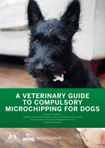 A VETERINARY GUIDE TO COMPULSORY MICROCHIPPING FOR DOGS