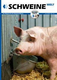 Schweine-Welt-2014-Juni-web