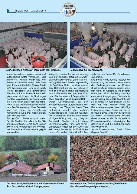 Schweine-Welt-2012-Dezember-web