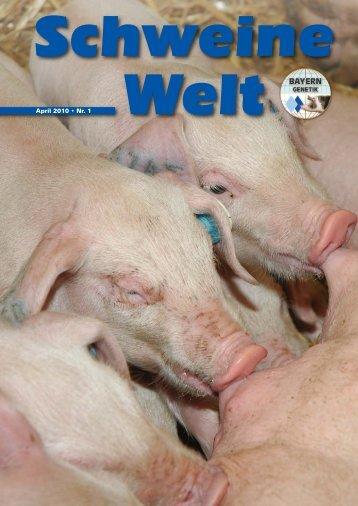 Schweine-Welt-2010-April-web