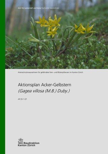 Aktionsplan Acker-Gelbstern - Amt für Landschaft und Natur ...