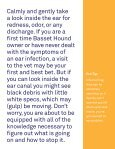 Ear Care for Basset Hounds - Page 7