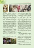 Pink Bollworm Strikes Bt-Cotton - Page 2