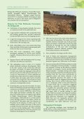 Pink Bollworm Strikes Bt-Cotton - Page 4