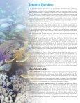 Arrecife Mesoamericano - Page 2