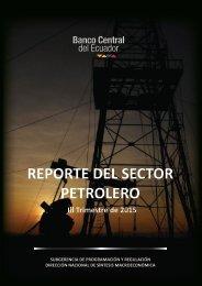 REPORTE DEL SECTOR PETROLERO