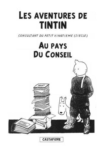 Tintin au Pays du Conseil