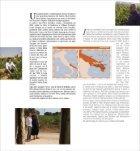 Catalogo - Santa Barbara - Page 7