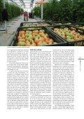 Sin tierra - Page 4