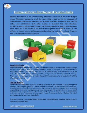 Custom Software Development Services india