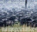 MIGRATION - Maasai Mara 2016 - Page 4
