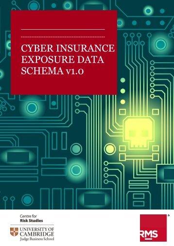 CYBER INSURANCE EXPOSURE DATA SCHEMA v1.0
