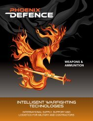 Weapons Pamphlet
