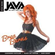 Java.Feb-web.2016