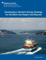Developing a Western Energy Strategy for the Black Sea Region and Beyond