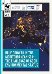 BLUE GROWTH IN THE MEDITERRANEAN SEA THE CHALLENGE OF GOOD environmental STATUS