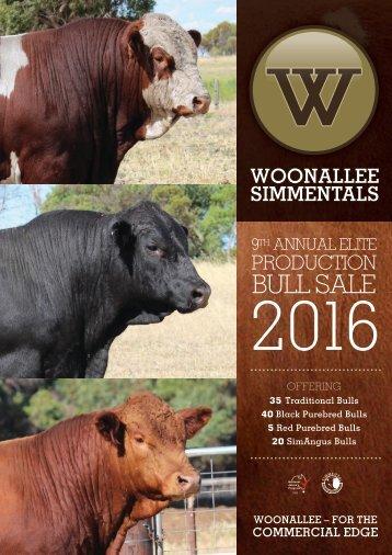 WOONALLEE-BULLS-2016-FINAL-LR