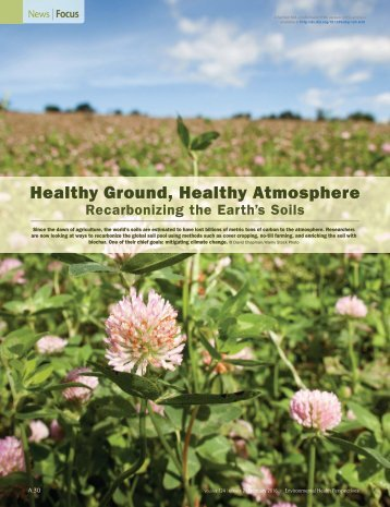 Healthy Ground Healthy Atmosphere