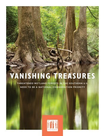 VANISHING TREASURES