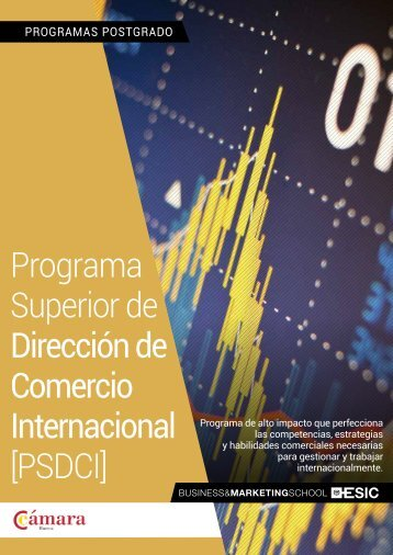 Programa Superior de Dirección de Comercio Internacional [PSDCI]