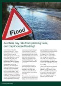 FORESTRY AND FLOODING - Page 6