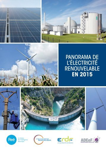 l'électricité renouvelable en 2015