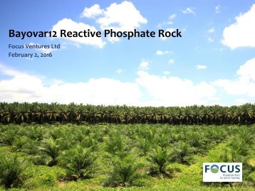 Bayovar12 Reactive Phosphate Rock