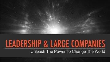 LEADERSHIP & LARGE COMPANIES