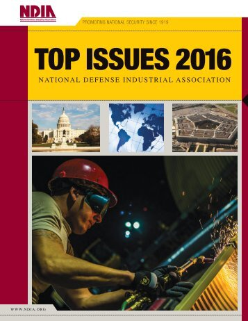 TOP ISSUES 2016