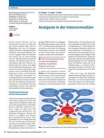 Analgesie in der Intensivmedizin 2016