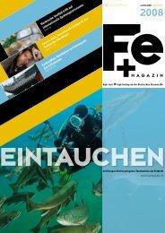FE+ Magazin Ausgabe Juli 2008 - Steirische Eisenstrasse
