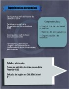 Publicista Profesional - Page 4