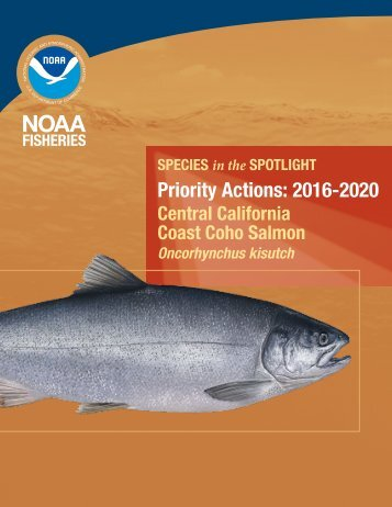 Priority Actions 2016-2020