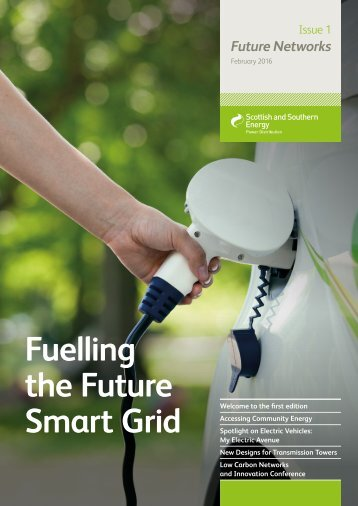 Fuelling the Future Smart Grid