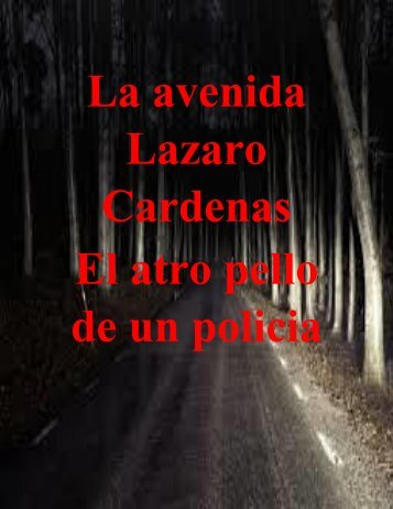 La Avenida Lázaro Cárdenas