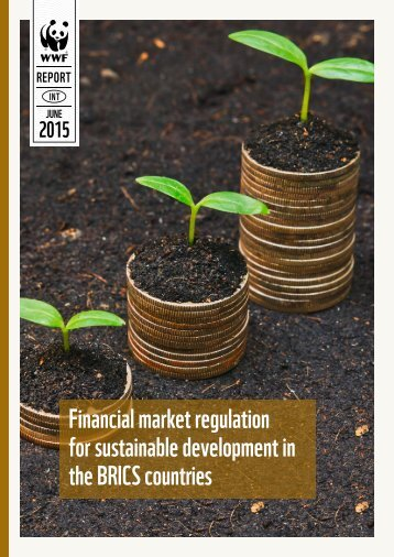 Financial market regulation for sustainable development in the BRICS countries