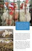 COMPASSIONATE CHOICES - Page 5