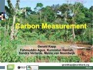 Carbon Measurement - G. Kapp et al. - Forest Carbon Partnership