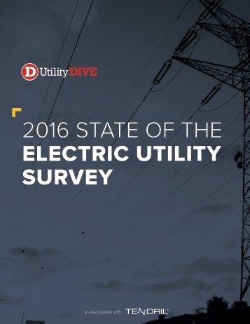 ELECTRIC UTILITY SURVEY