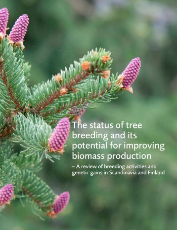 The status of tree breeding and its potential for improving biomass production