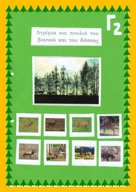 Αγρίμια και Πουλιά του βουνού και του δάσους - Τμήμα Γ2